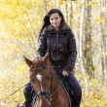 Equestrian on horseback — Stock Photo #48616167
