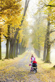 Vrouw met een kinderwagen op wandeling in herfst steegje — Stockfoto
