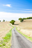 Field with a road, Gers Department — Stock Photo