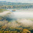 Autumnal forest in fog — Stock Photo #51125753