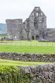 Ruins of Glenluce Abbey — Stockfoto