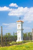 God's torture with vineyard near Palava — Stock Photo