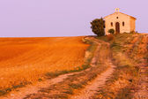 Chapel with lavender field — Stock Photo
