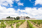 Monbazillac Castle with vineyard — Stock Photo