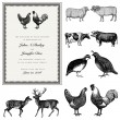 Stock Vector: Vector Male and Female Animal Vintage Wedding Invite Set
