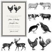 Vector Male and Female Animal Vintage Wedding Invite Set — Stock Vector
