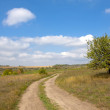 Road in steppe — Stock Photo