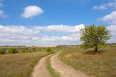 Straße in der steppe — Stockfoto