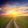 Path in steppe to sunset — Stock Photo