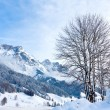 Winter scene in Alps — Stock Photo