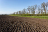 Ploughed field — Stock Photo