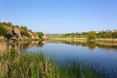 Cena de verão no rio — Foto Stock