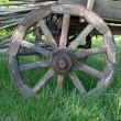 Wooden wheel - Stock Photo