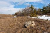 Stein auf trockenem gras in bergen — Stockfoto
