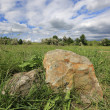 Stones in green grass - Stock Photo