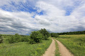 Rut road in nice day — Stock Photo