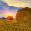 Stock Photo: Hayrolls on sunset background
