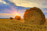 Hayrolls on sunset background — Stock Photo