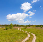 Rut road in steppe — Stock Photo