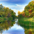 Autumn river — Stock Photo #32357361