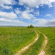 Rut road among green meadow — Stock Photo #32746073