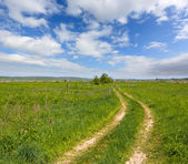 Rut road among green meadow — Stock Photo