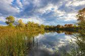 Podzimní scény na jezeře — Stock fotografie