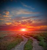 Silnice v stepi na čas západu slunce — Stock fotografie