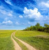 Route sur le pré vert — Photo