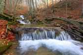 Cascade of mountain river in autumn forest — Stock Photo
