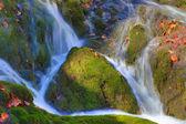 Mountain stream — Stock Photo