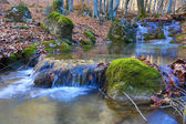 Mountain brook in autumn forest — Stock Photo