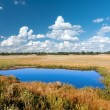 Blue lake in steppe — Stock Photo #37540685