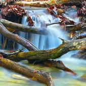 Mountain brook — Stock Photo