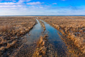 Flooded rut road — Stock Photo