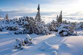 Winters tafereel in de bergen — Stockfoto