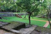 Garden in Sirigiya — Stock Photo