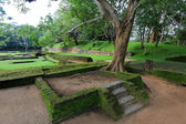 Ruins of Sigiriya Castle — Foto de Stock