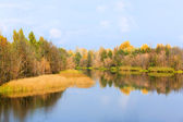 Autumn on river — Foto Stock