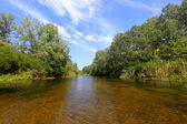 Summer River — Stockfoto