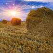 Hay-roll on meadow — Stock Photo #42481423
