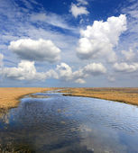 Lake in spring steppe — Stock Photo