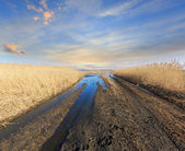 Rut road in spring steppe  — Stock Photo