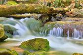 Pequena cachoeira no rio da montanha — Foto Stock