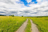 Rut road in steppe — Foto Stock