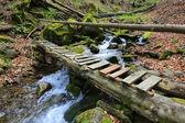 Wooden bridge over mountain brook — Stock Photo