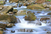 Nice mountain stream — Stock Photo