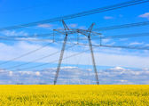 Height voltage power line — 图库照片