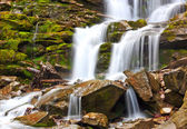 Nice waterfall in Carpathian mountains — Stok fotoğraf