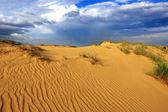 Sands in desert — Zdjęcie stockowe